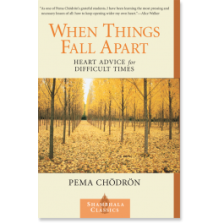 """When Things Fall Apart"" by Pema Chodron"