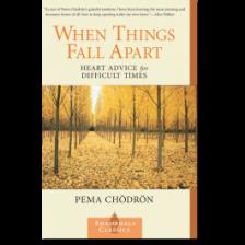 """When Things Fall Apart"" by Pema Chodron"