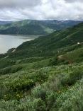 Above Palisades Reservoir